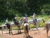 Horseback Riding in Rancho La Merced