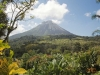Nature History Walk to Arenal
